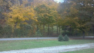 The view from my mom's front porch.
